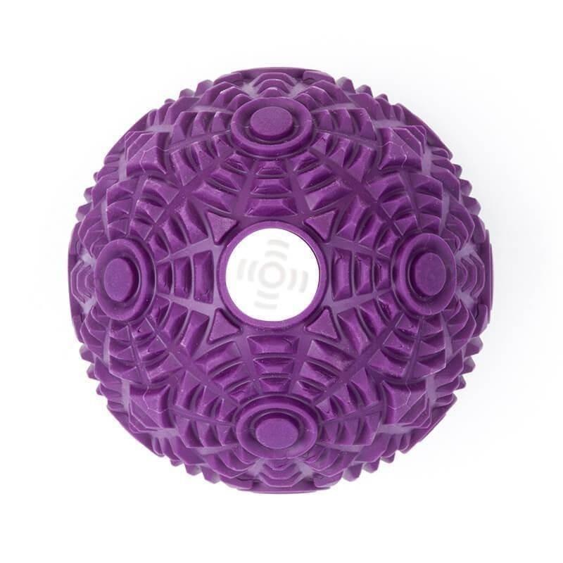 XoomBall - Purple